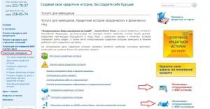 Организации сотрудничающие с НБКИ